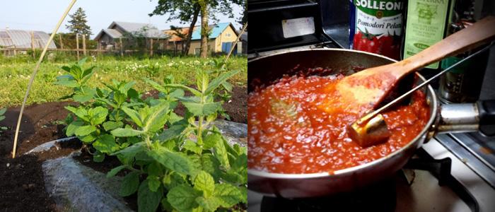 特製トマトソースの試作中